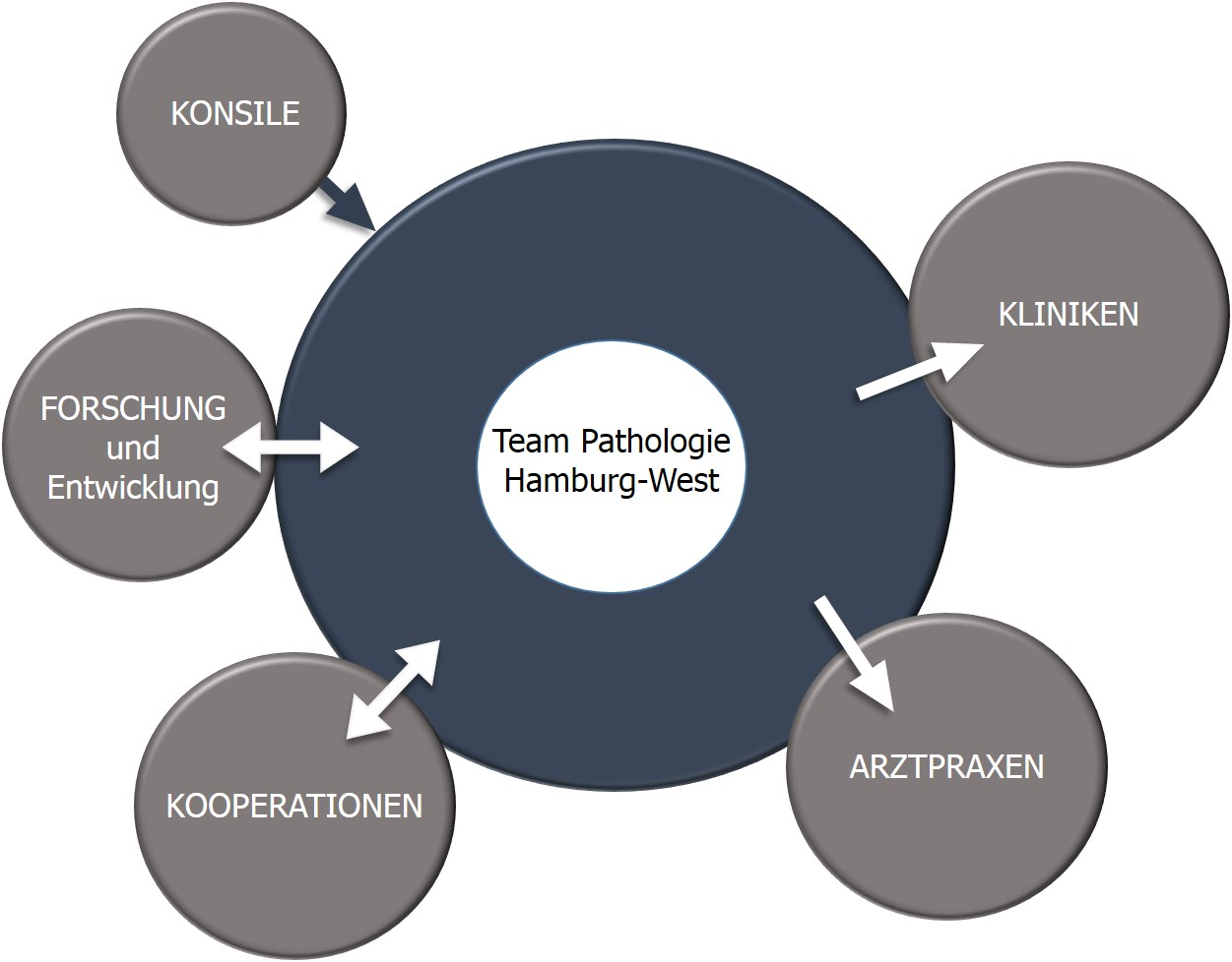 Pathologie Hamburg West Organigram